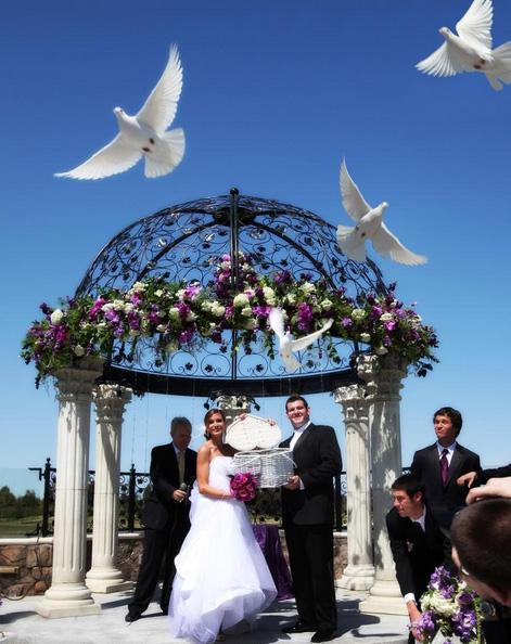 Palomas en las bodas