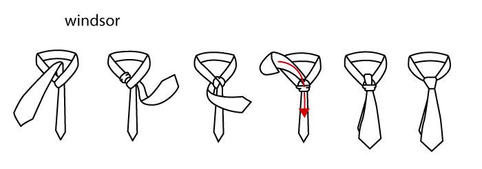 nudo corbata windsor