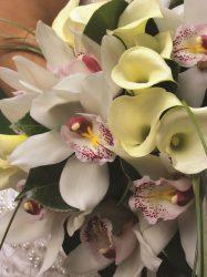 En Jardin Botanico la concepcion Malaga la boda de 7